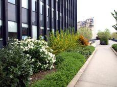 Promenade Plantée. Kanceláře s okny do parku.