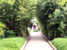 Promenade Plantée. V roce 1986 po bouřlivých diskusích byl přijat projekt na parkovou úpravu.