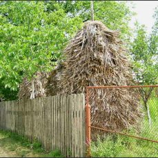 Ve vesnicích běží jiný čas. Nejen jiný, než u nás. Jiný, než v celém Rumunsku. Lidé jezdí na pole dřevěnými vozy, tradičně obkládají domy, zpívají v kostelech a udržují tradice, které už u nás jsou dávno zapomenuté - a nevědí proč.