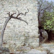 corsica romana granatova