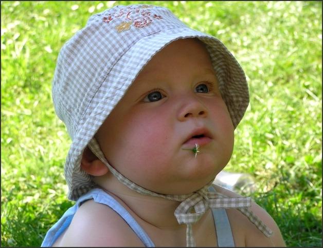 Že mají dvouzubé děti rády sladké polívky je pověra. Největší pochoutka je bahno, tráva, žížala a sedmikrásky.