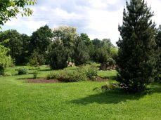 botanicus_ostra_garden_www.frangipani (11)
