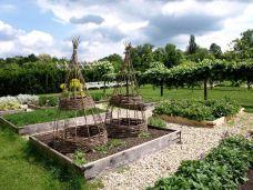 botanicus_ostra_garden_www.frangipani (27)