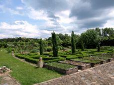 botanicus_ostra_garden_www.frangipani (4)
