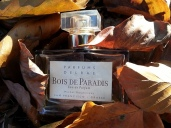 Parfums Delrae Bois de Paradis
