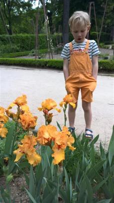 botanical garden madrid (4)