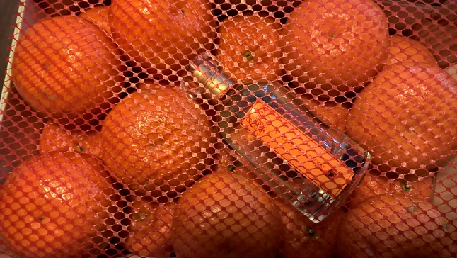 campos de ibiza mandarina3