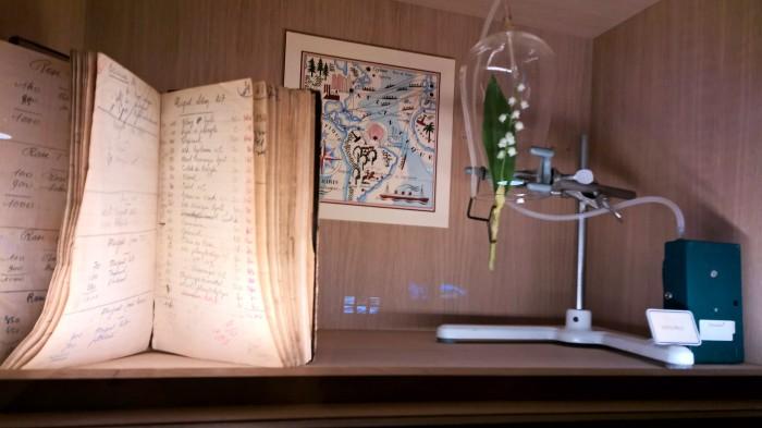 musee fragonard muguet